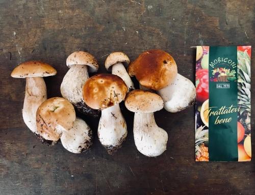 I benefici dei funghi!